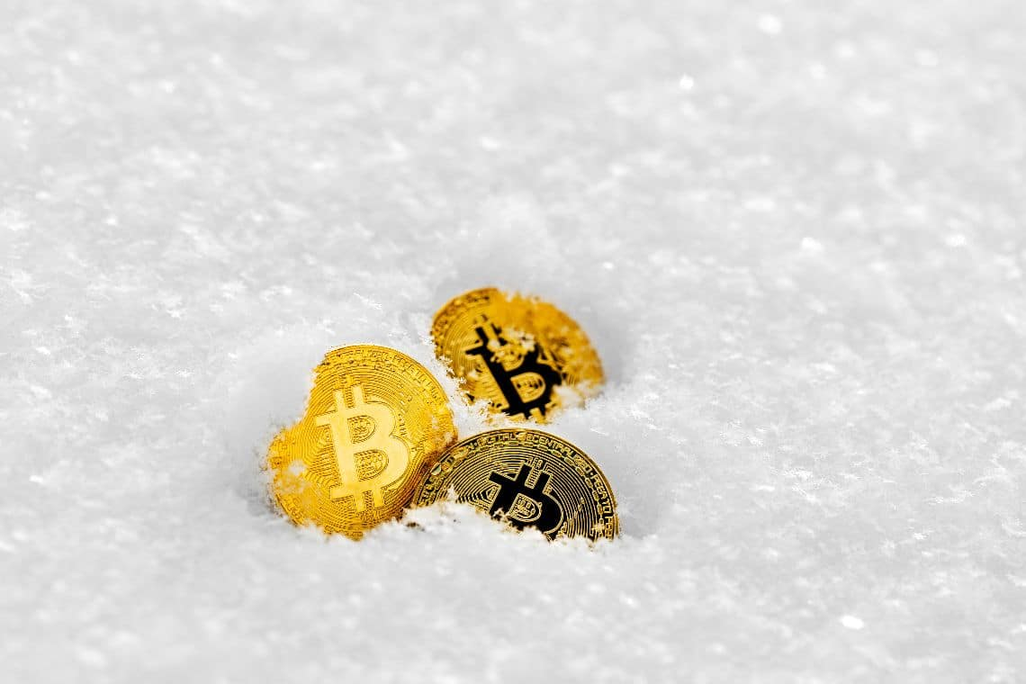 """Gemini, Winklevoss: """"There may never be another crypto winter"""""""