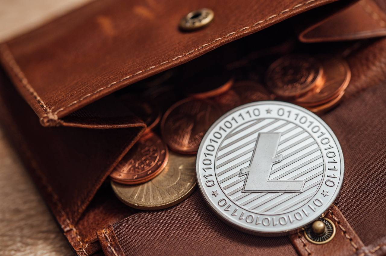 Litecoin, Dogecoin: price analysis of LTC and DOGE