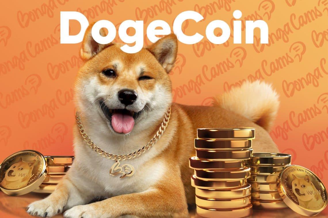 BongaCams Dogecoin