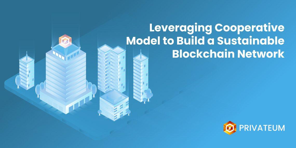 Privateum Cooperative Model