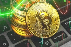 Where can Bitcoin go: predictions of the big players