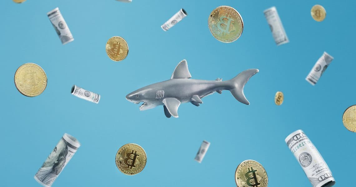 Santiment, annual highs for Bitcoin whales