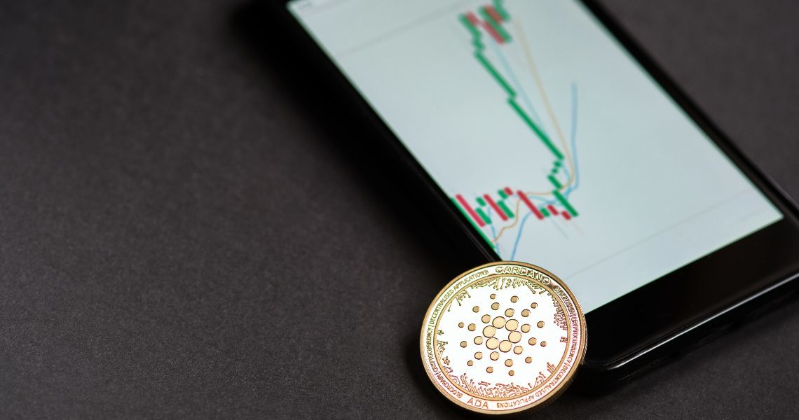 Italian investors very interested in Cardano